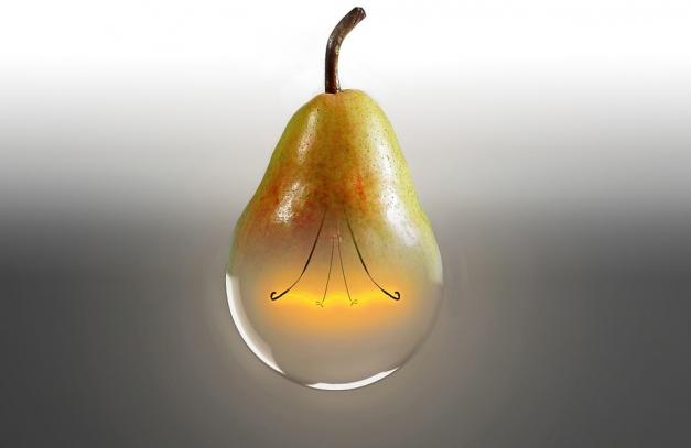 """FranceAgriMer gère la thématique """"alimentation intelligente"""" dans le cadre du concours à l'innovation des investisselents d'avenir."""