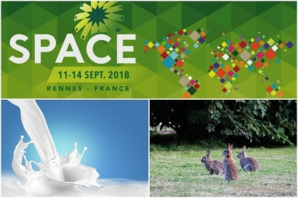 Affiche du space 2018 et photo de lait et de lapin