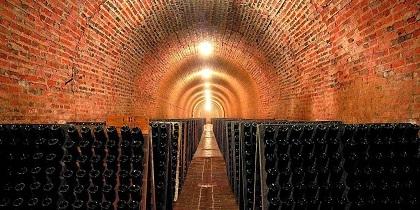 image d'une cave à vin