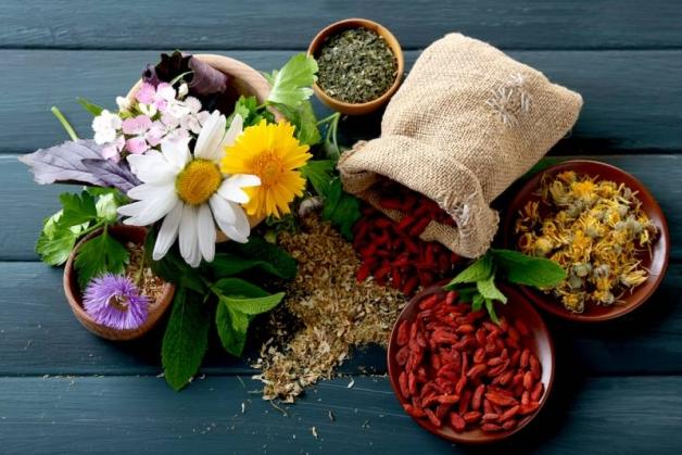 photo de Plantes à Parfum, Aromatiques et Médicinales