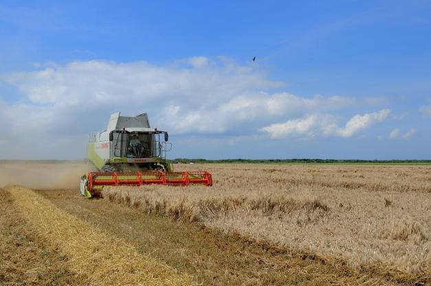 récolte céréales