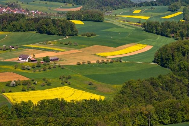 paysage et parcelles