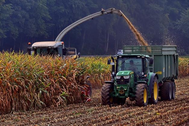 50 % de la récolte de maïs réalisée en France au 5 octobre 2020