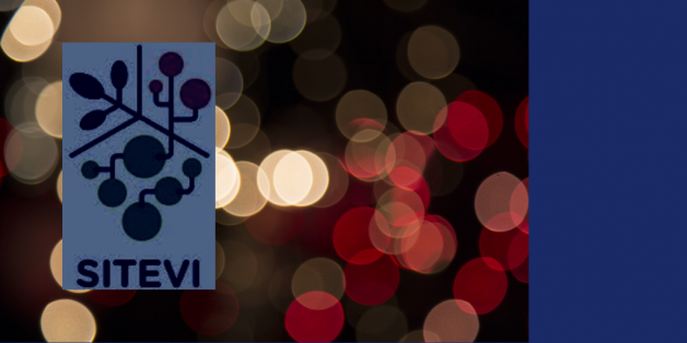logo sitevie