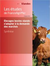 affiche étude de FranceAgriMer : Élevages bovins viande : s'adapter à la demande des marchés