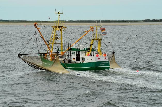 bateau qui sort du port