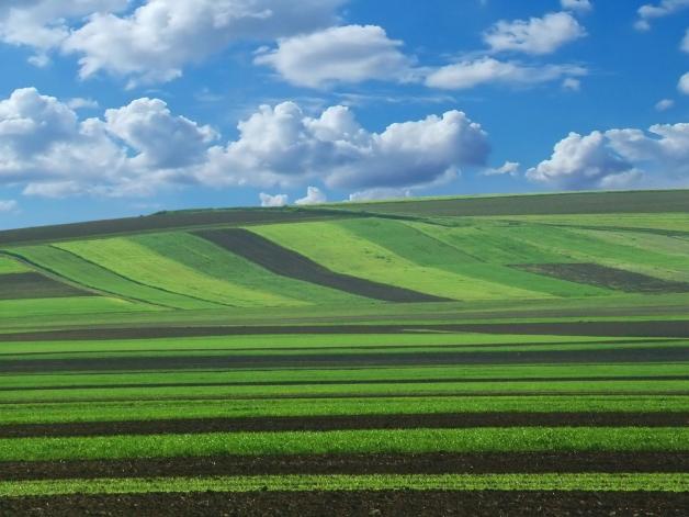photo d'un paysage agricole