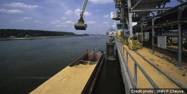 Transport de céréales par voie d'eau, un mode de transport économique et écologique