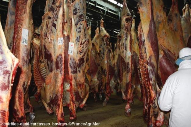Contrôle des carcasses en abattoir par les services de FranceAgriMer