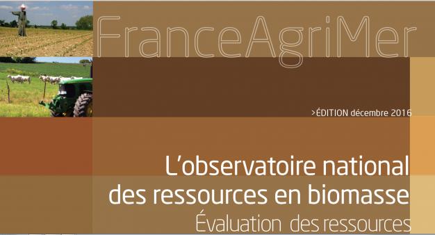 Nouvelle édition de l'évaluation de la ressource biomasse en France