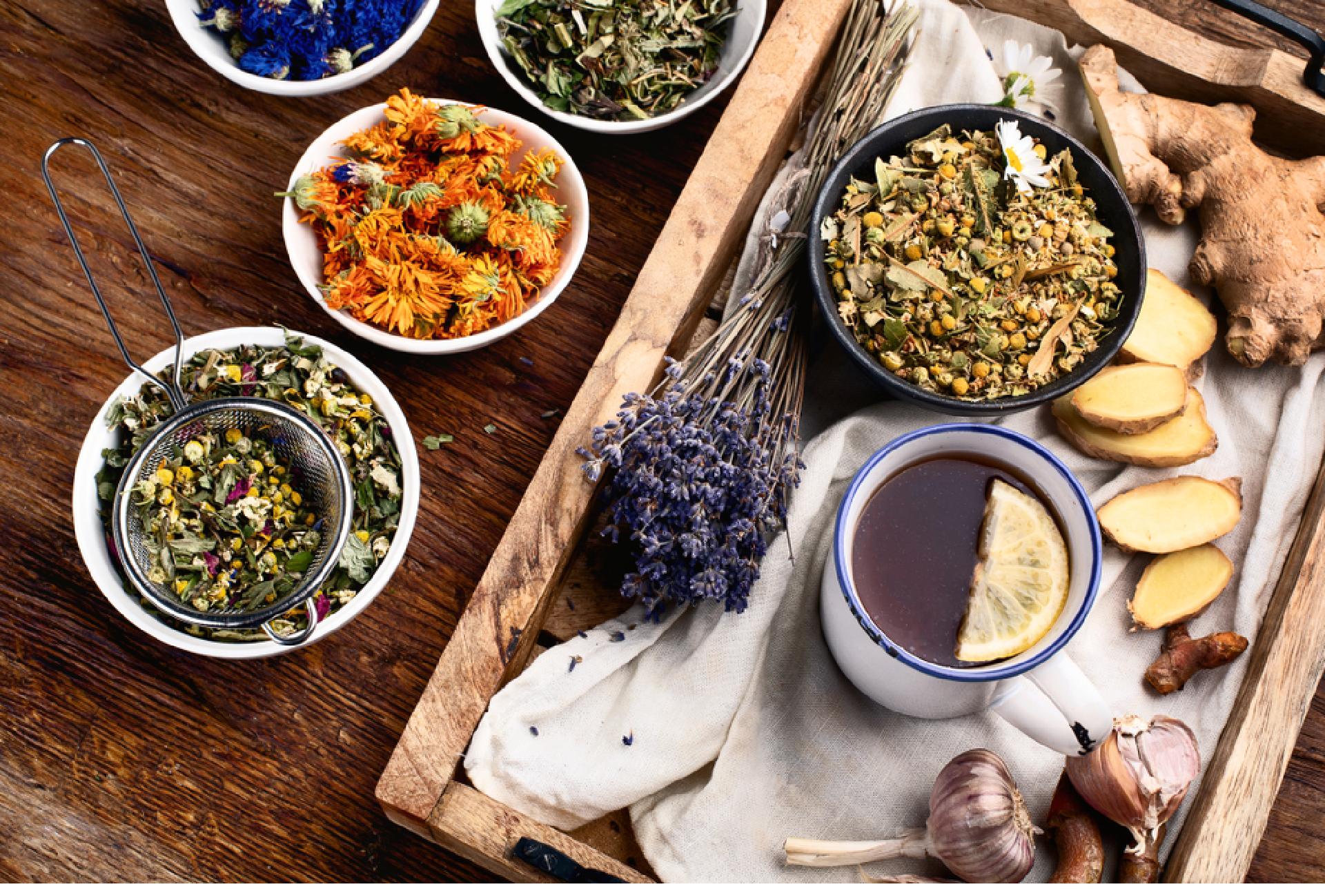 Plantes à parfum, aromatiques et médicinales