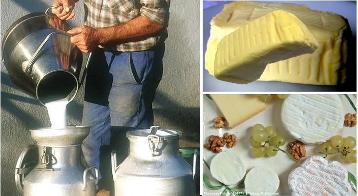 lait_beurre-et_fromages